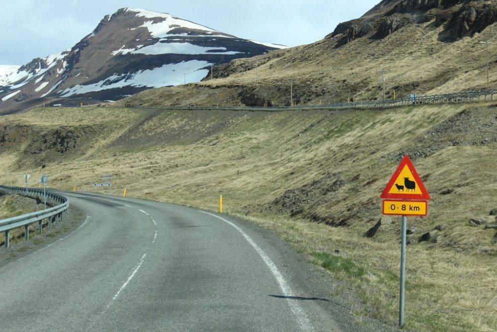 alquiler de autocaravanas en Islandia