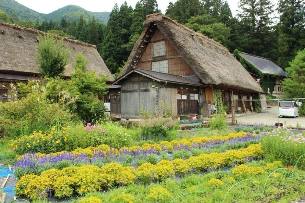 que ver en Shirakawago