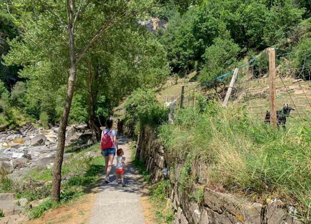 excursiones Pirineo Aragonés